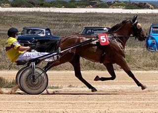 Hats and Horses- Menorca